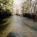 Pysht River, Pysht River Protection Area