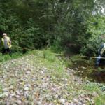 fish passage culverts, Clallam County Culvert Inventory