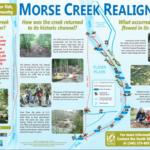 Morse Creek Restoration, Morse Creek